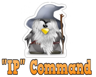Linux : Ip Commands